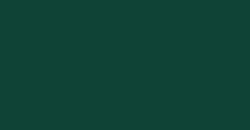 Ral 6005 - зеленый мох